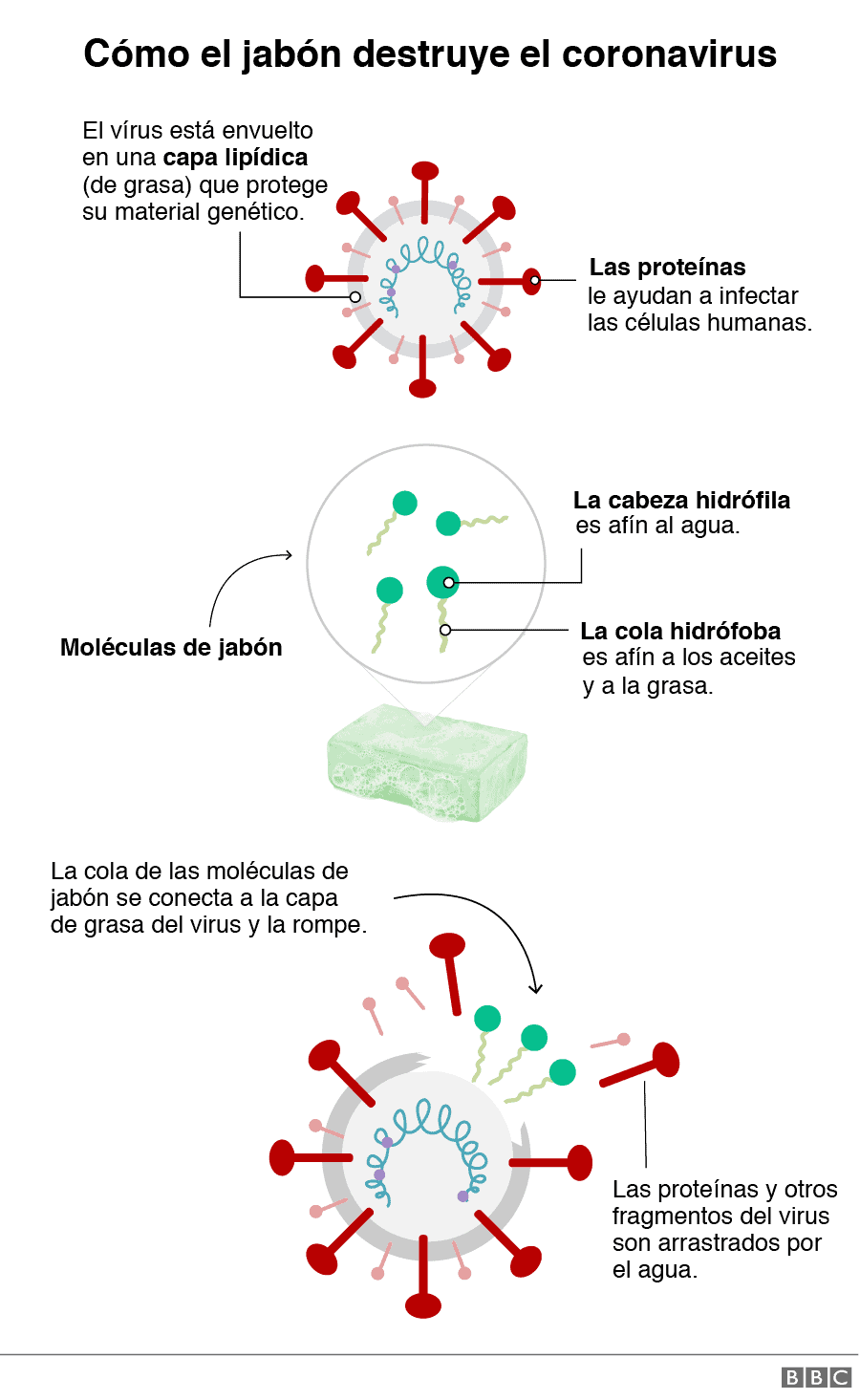 jabon para protegerse contra el coronavirus